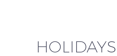 Luxury Explorer Travel Holidays Logo